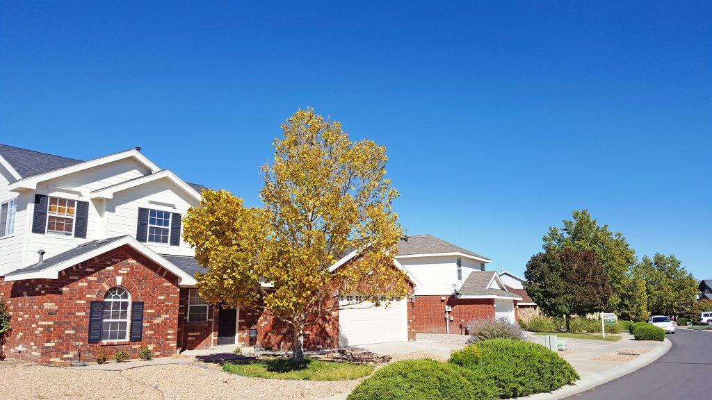 Homes in South Pointe Neighborhood